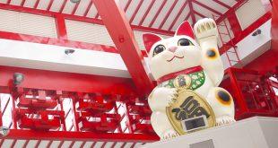 Maneki Neko - Chú Mèo May Mắn Ở Nhật Bản 13