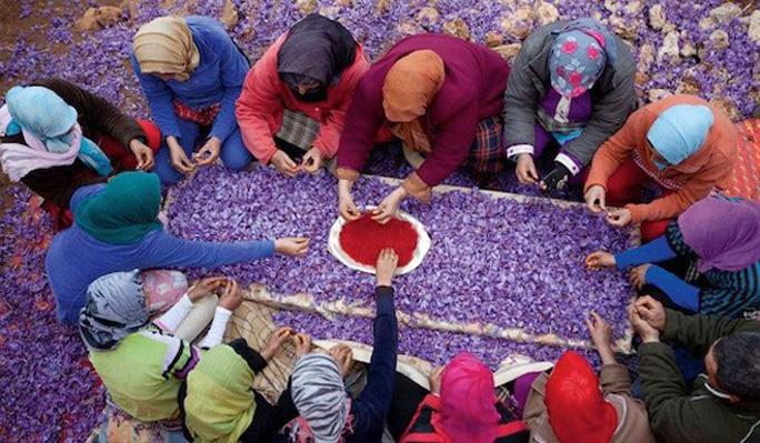 Cách Dùng Nhụy Hoa Nghệ Tây - Saffron Chuẩn Sức Khỏe Làm Đẹp 1