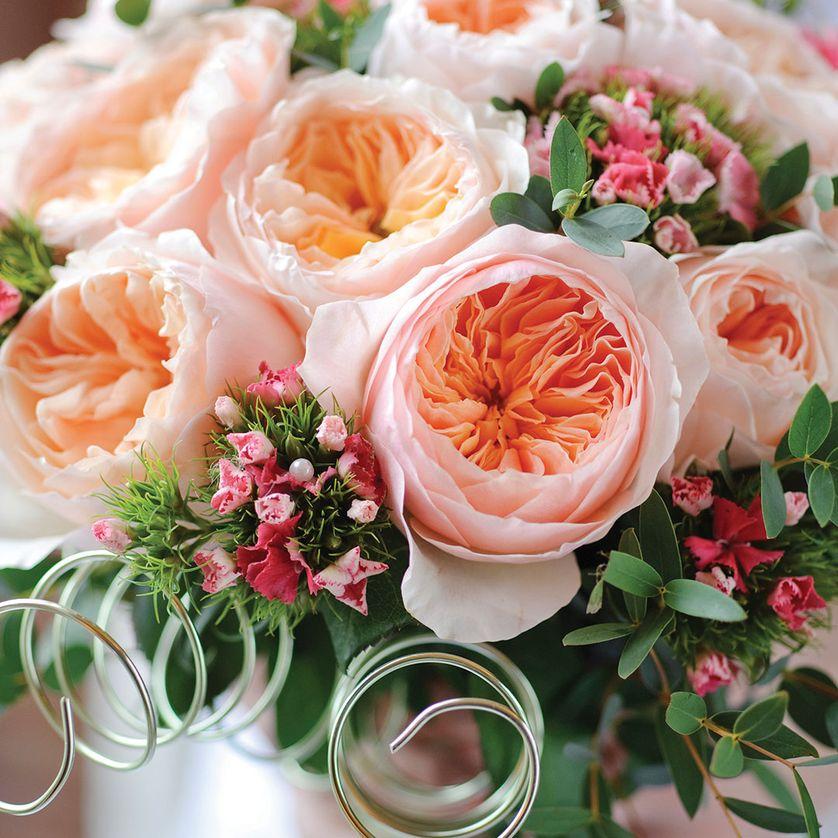 Hoa hong juliet - Những loài hoa đắt nhất thế giới