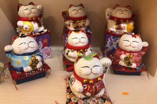 chon meo may man tang nguoi than ban be 310x205 - Danh Sách Các Tiêu Chí Lựa Chọn Mèo Thần Tài Làm Quà Tặng