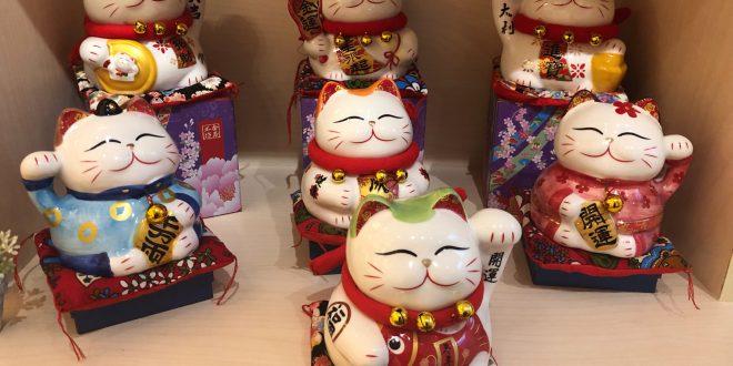 chon meo may man tang nguoi than ban be 660x330 - Danh Sách Các Tiêu Chí Lựa Chọn Mèo Thần Tài Làm Quà Tặng