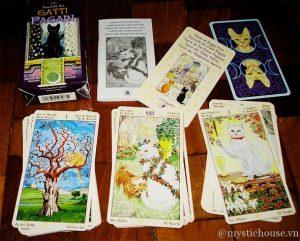 Những Tiêu Chí Phân Loại Bài Tarot 4