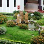 Chọn Cây Trồng Sân Vườn Cho Người Bận Rộn 62