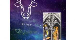12 Cung Hoàng Đạo Tuần Từ 30/07 Đến 05/08 Năm 2018 Từ Bài Tarot 18