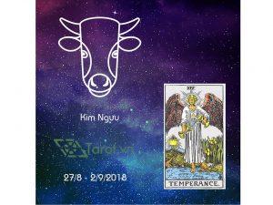 12 Cung Hoàng Đạo Tuần Từ 27/08 Đến 02/09 Năm 2018 Và Lá Tarot 5