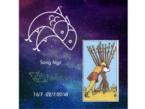 12 Cung Hoàng Đạo Tuần 16/07 Đến 22/07 Năm 2018 Với Tarot 12