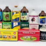 Top 10 địa chỉ bán thuốc thú y uy tín nhất tại TP.HCM