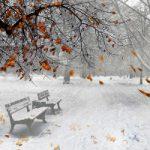 Top 10 Bài hát hay nhất dành cho mùa đông
