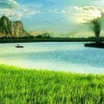 Top 10 Bài thơ hay về làng quê Việt Nam