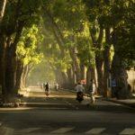 Top 10 Con đường đẹp nhất ở Hà Nội để bạn đi lượn