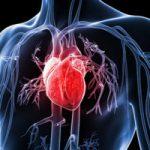 Top 10 Loại thuốc bổ cho tim mạch tốt nhất hiện nay