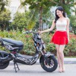 Top 10 Mẫu xe máy điện tốt nhất Việt Nam 2018