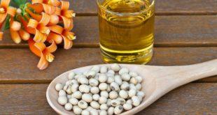 Top 10 Thương hiệu dầu đậu nành tốt nhất hiện nay