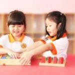 Top 10 Trường mầm non tốt, uy tín nhất Quận 10, TP Hồ Chí Minh