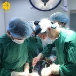 Top 11 Địa chỉ phẫu thuật nâng ngực uy tín nhất tại Hà Nội