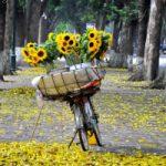 Top 12 Bài thơ hay về thời khắc giao mùa cuối thu đầu đông