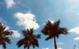 Top 12 Bài thơ hay viết về mây