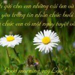 Top 15 Lời chúc buổi sáng lãng mạn nhất gửi đến người yêu