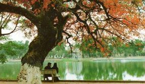 Top 16 Bài thơ hay về mùa thu