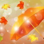 Top 18 Bài thơ hay viết về mùa gió heo may