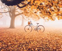 Top 20 Bài thơ hay viết về khoảnh khắc giao mùa chuyển từ Thu sang Đông