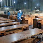 Top 5 Công ty sản xuất chuyên gỗ chất lượng nhất tại Bình Định