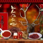 Top 5 Cửa hàng bán Nhung Hươu chất lượng và uy tín nhất ở Hà Nội