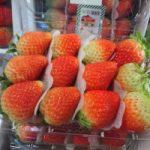 Top 5 Cửa hàng thực phẩm sạch uy tín và chất lượng nhất Quảng Ngãi