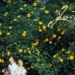 Top 5 Studio chụp ảnh cưới đẹp nhất ở Mộc Châu