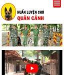 Top 6 Trung tâm huấn luyện chó uy tín và chuyên nghiệp nhất ở TPHCM