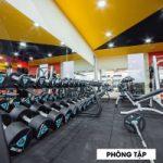 Top 7 Phòng tập Gym uy tín và chất lượng nhất TP. Buôn Ma Thuột