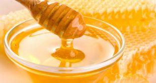 Top 8 địa chỉ bán mật ong nguyên chất chất lượng nhất tại Hà Nội