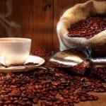 Top 8 Máy xay cà phê chất lượng nhất hiện nay