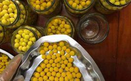Top 8 Thương hiệu viên tinh nghệ mật ong tốt nhất trên thị trường