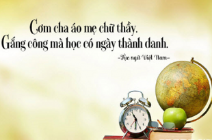 """ca dao tuc ngu hay hat viet nam 310x205 - Top 10 Bài văn bình luận câu tục ngữ """"Có chí thì nên"""" hay nhất"""