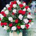 Top 10 Shop hoa tươi đẹp nhất Đồng Tháp