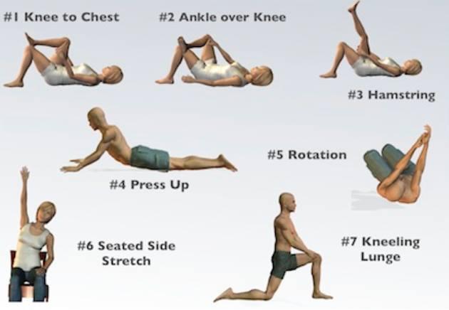 Stretching Và Những Lợi ích Của Stretching Với Sức Khỏe 1